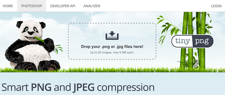 WordPress Bilder komprimieren mit tinypng.com