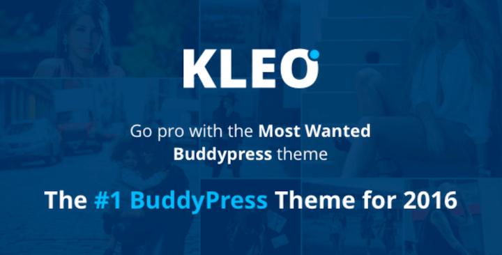 KLEO WordPress Theme für die knirpsy Startseite und die Community