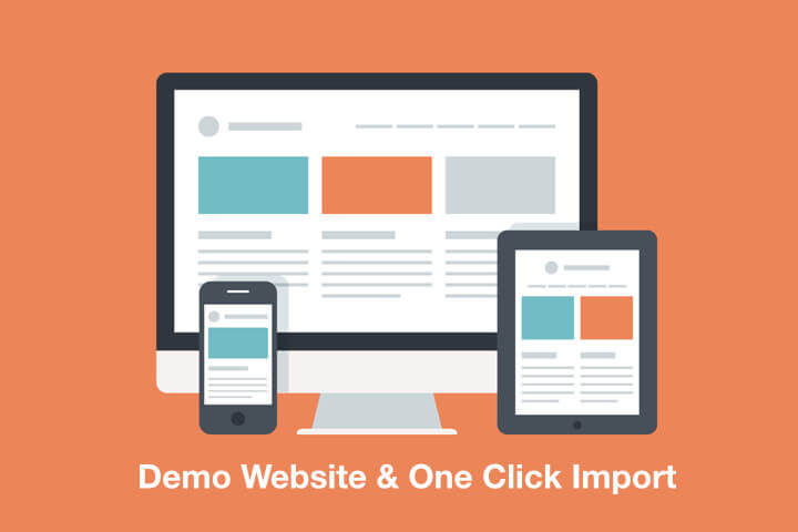 Demo Website erstellen mit One Click Demo Import