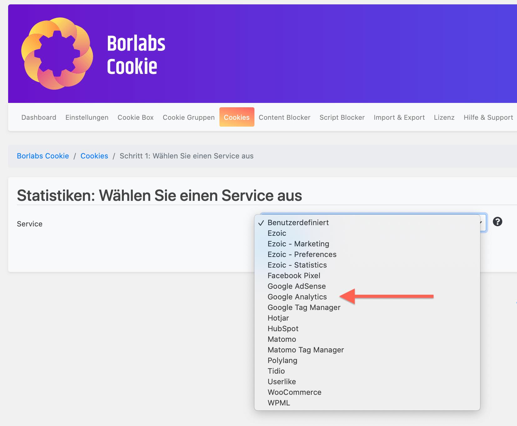 Einfache Integration von Google Analytics mit Borlabs Cookie Plugin