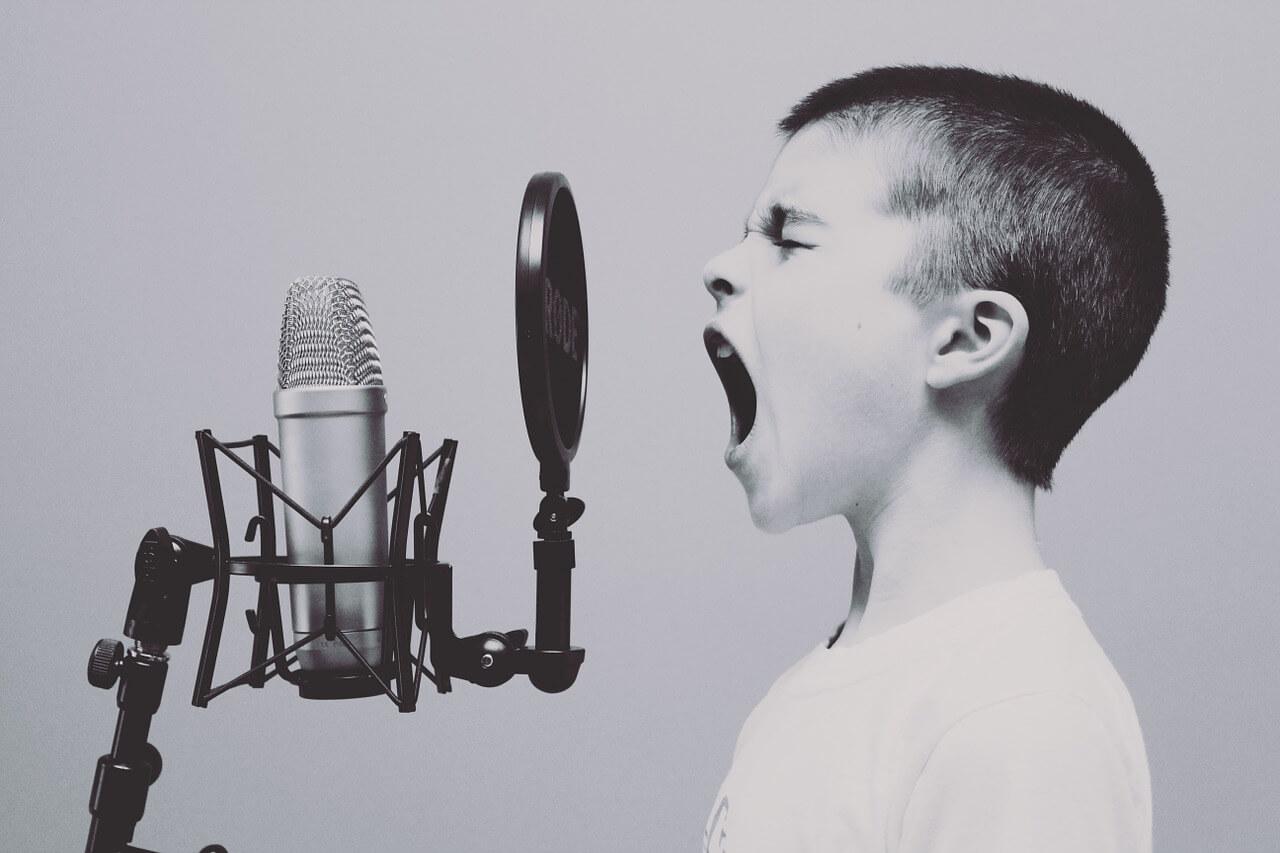 SEO Trend - WordPress auf Voice Search optimieren